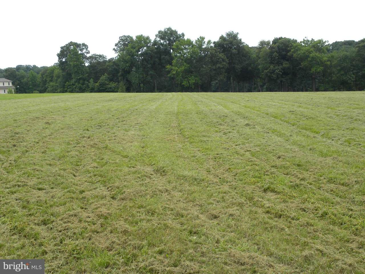 Fairgale Farm Lane - Photo 1