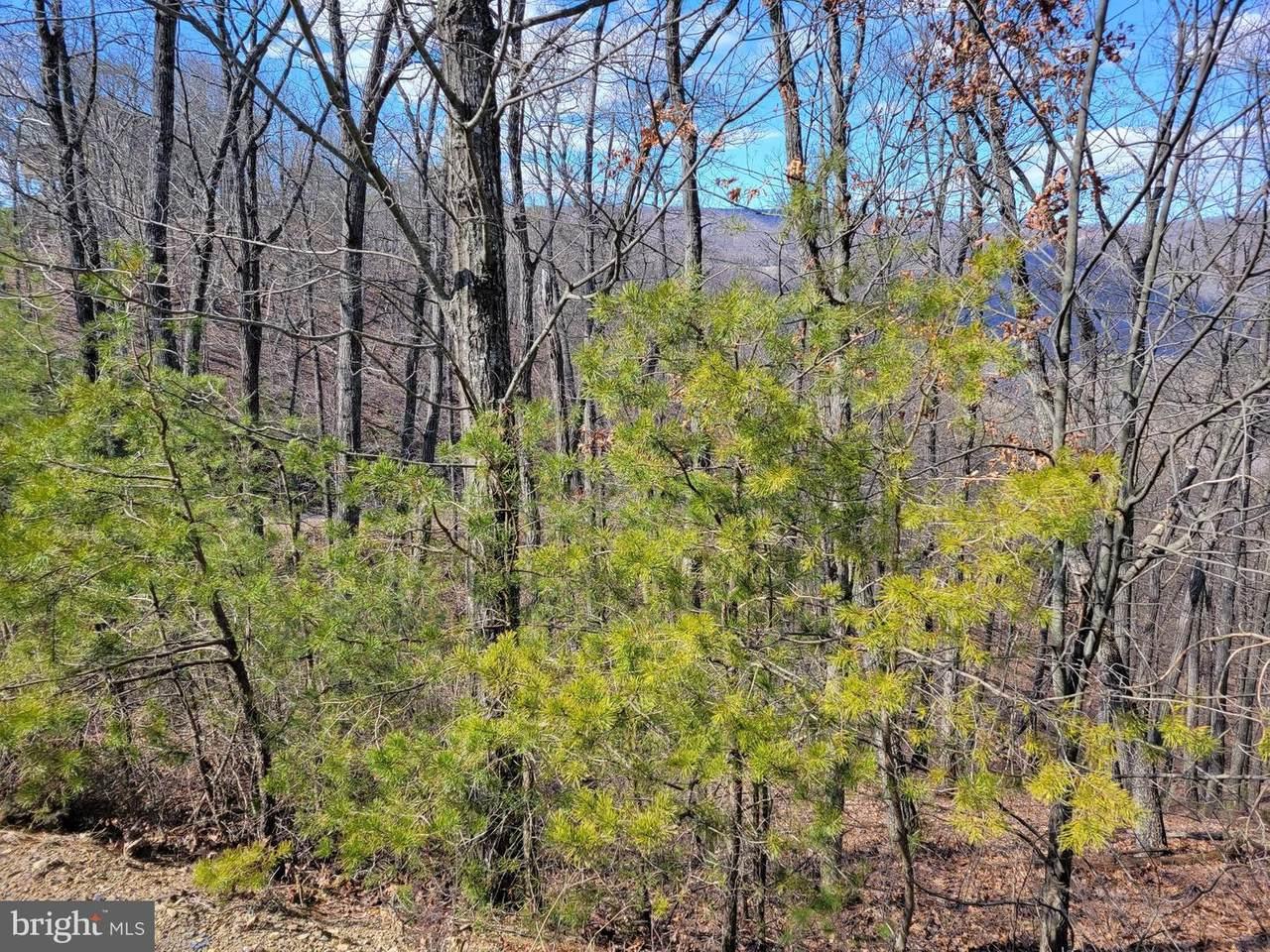 Lot 29 Grace Mountain Road - Photo 1