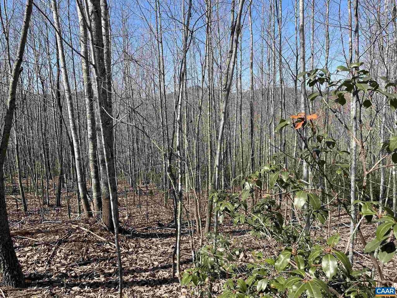 TBD 12 Mountain Ridge Lane - Photo 1