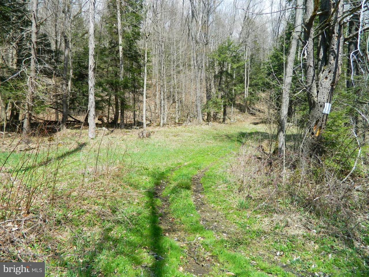 Hare Hollow Road - Photo 1