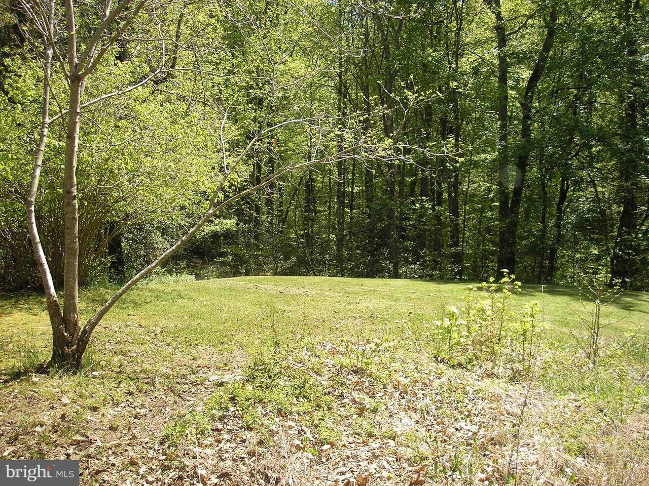 16512 Boot Hill Road - Photo 1