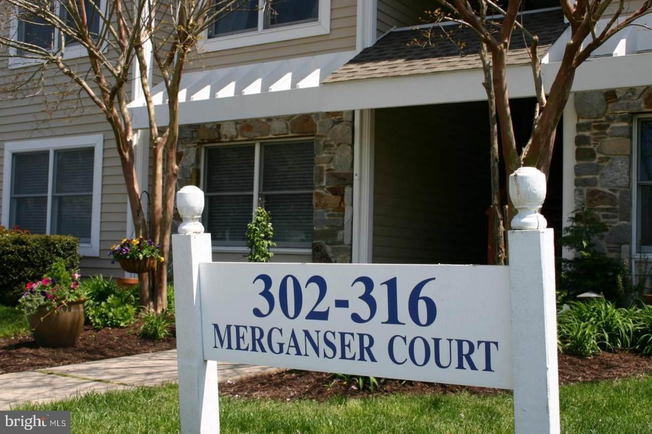 314 Merganser Court - Photo 1