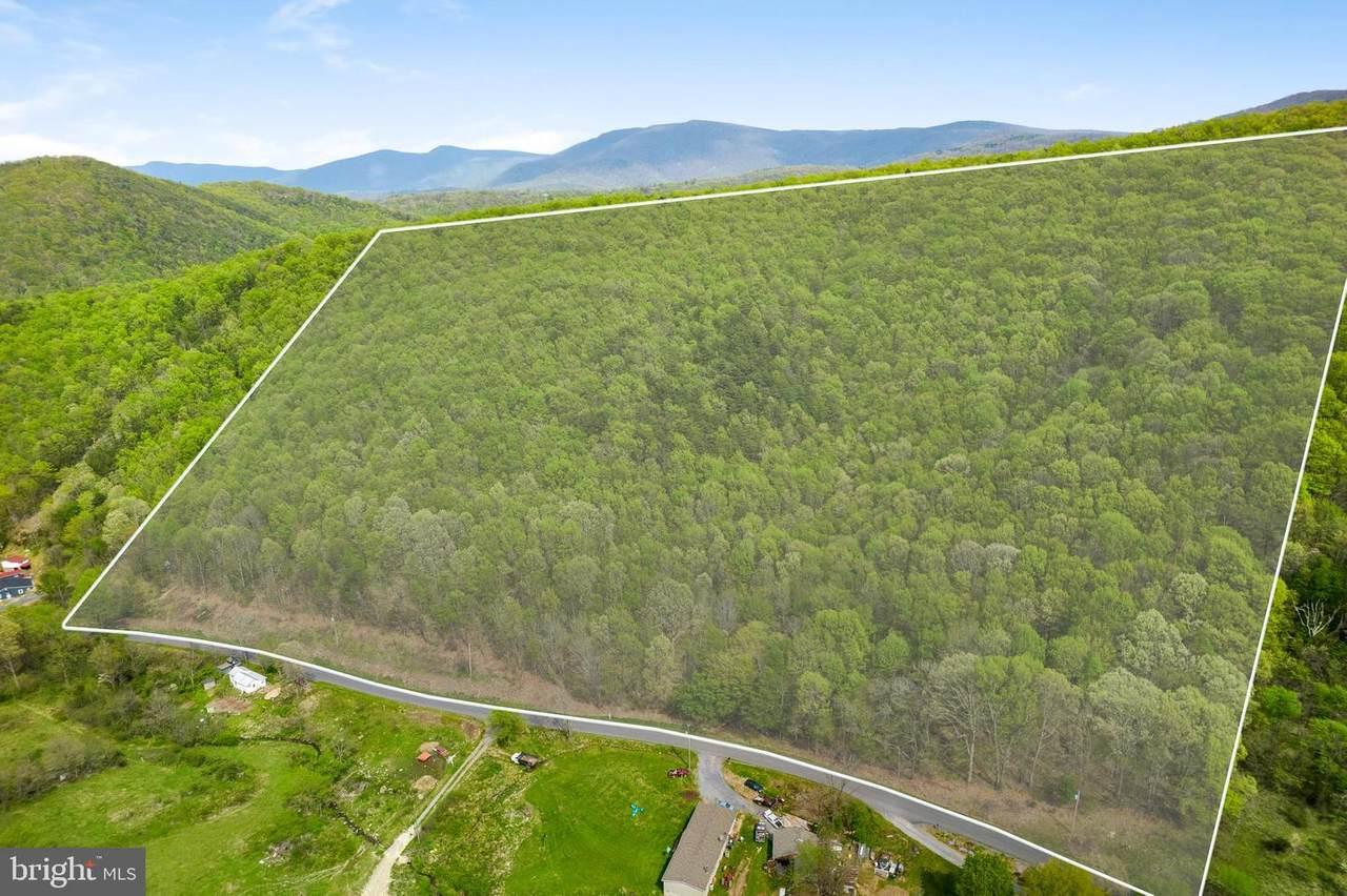 Cubbage Hollow Rd, Lot 75 - 40.55 Acres - Photo 1