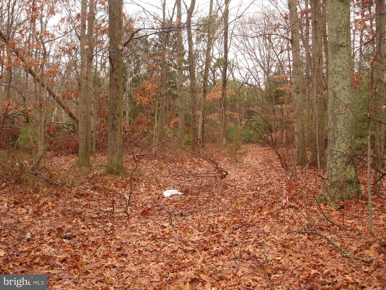 2659 Fries Mill Road - Photo 1