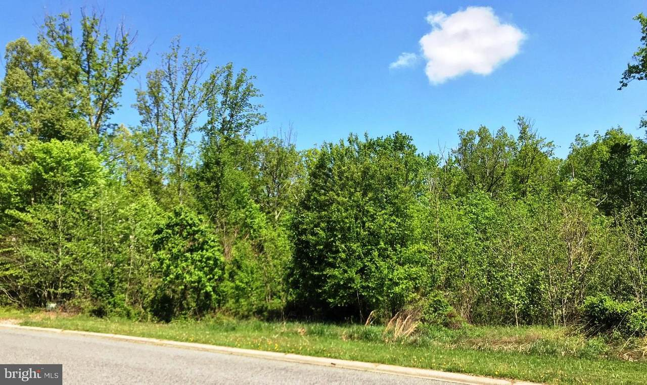 39 Wood Chip Road - Photo 1