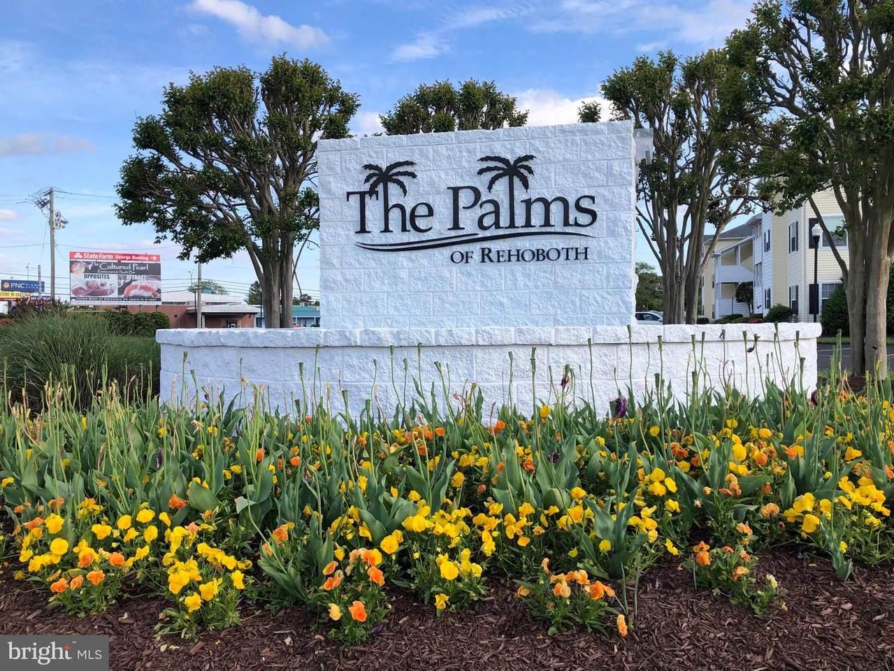 36525 Palm Drive - Photo 1