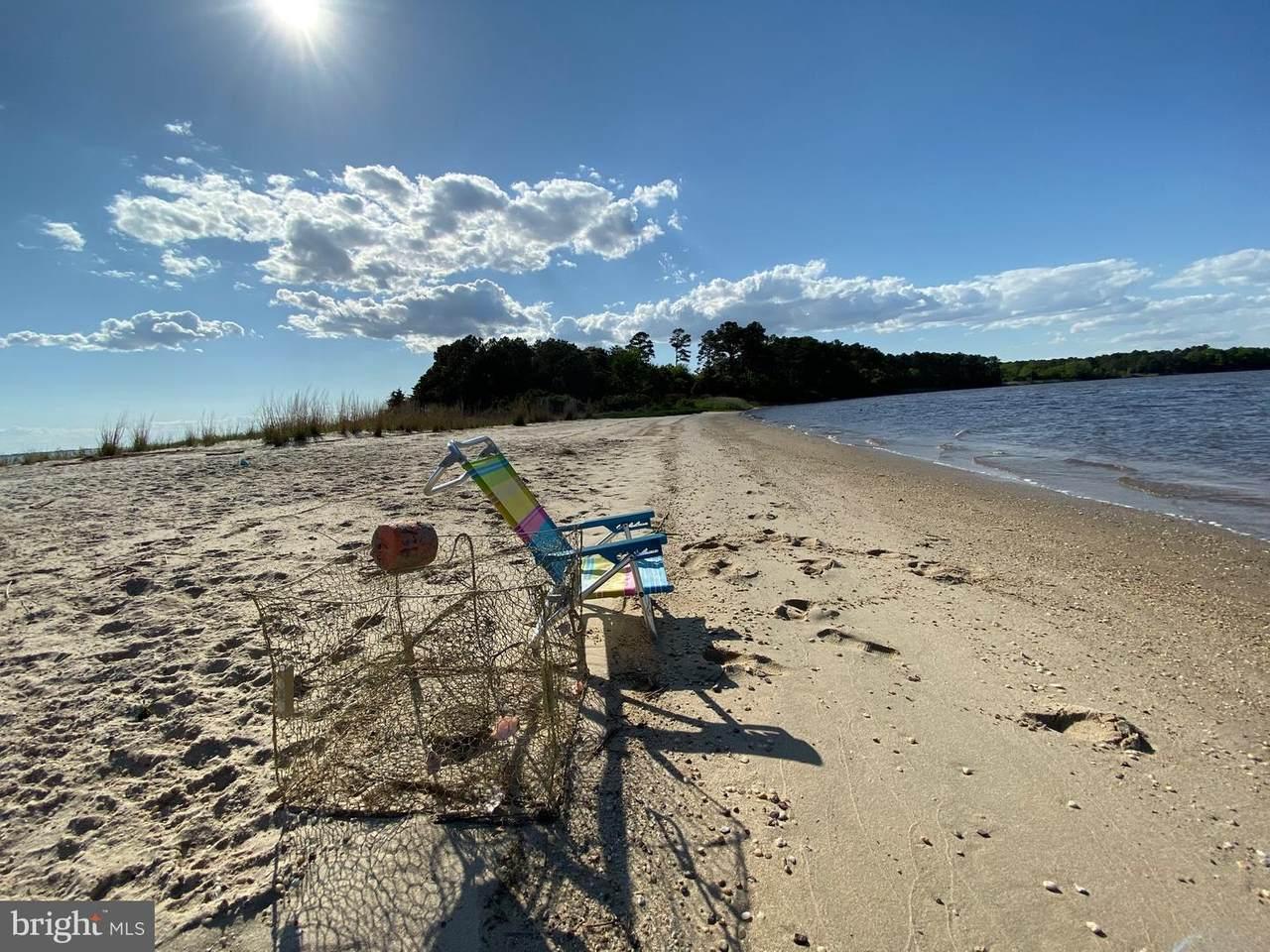 Williams Point Island - Photo 1
