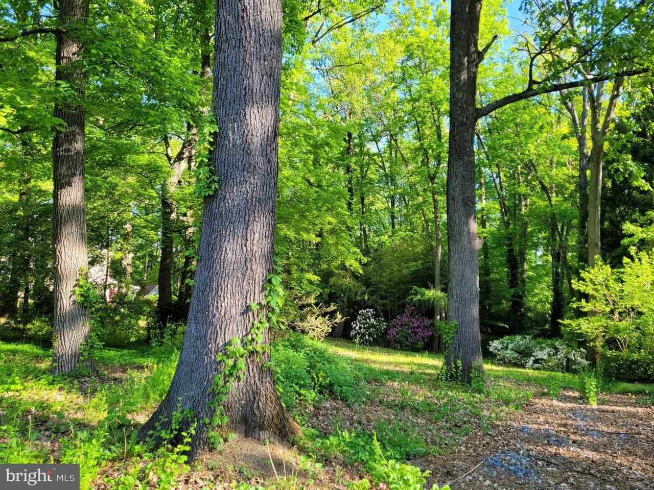 1032 Oak Drive - Photo 1