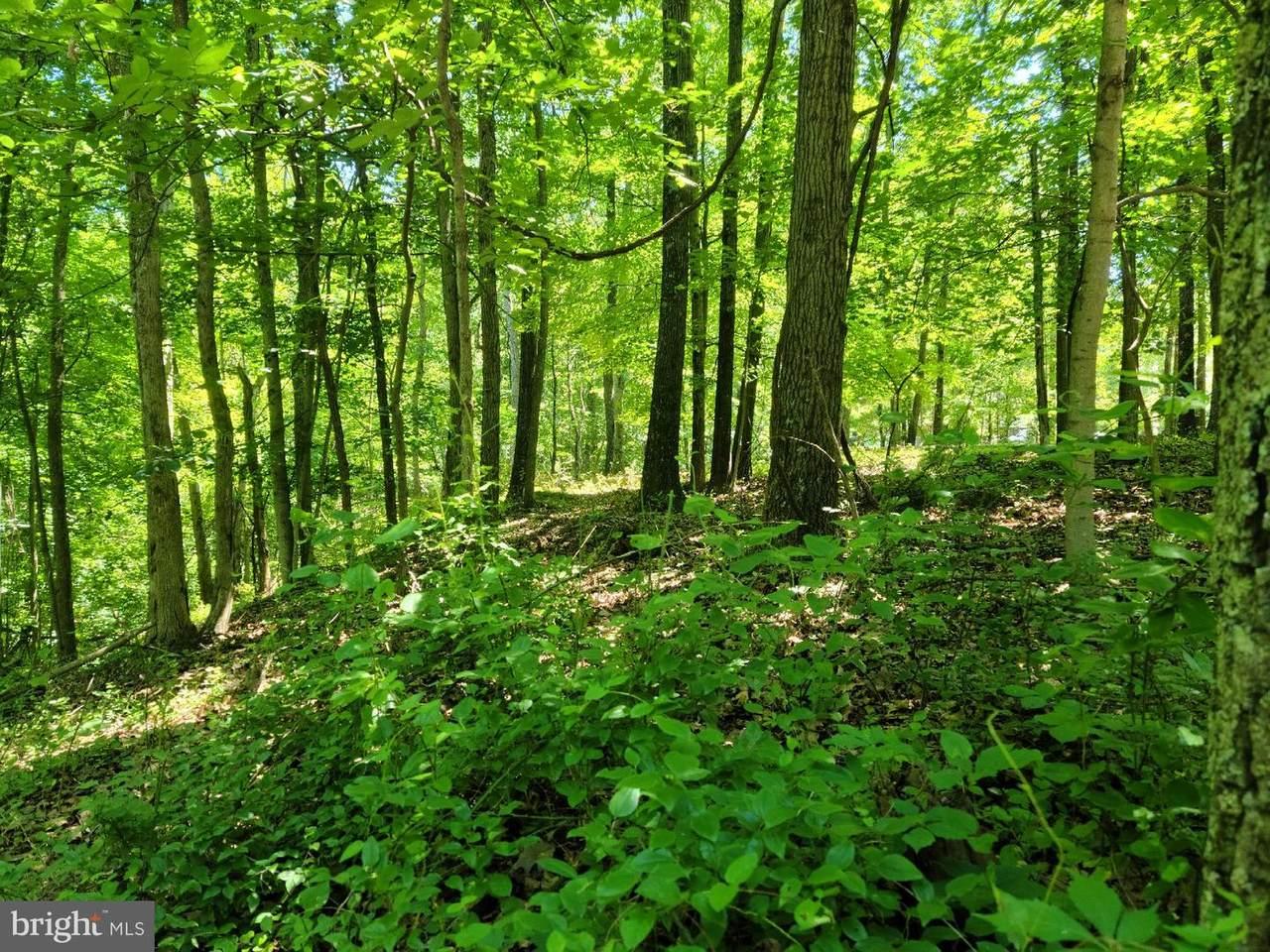 9 Potomac Woods - Photo 1