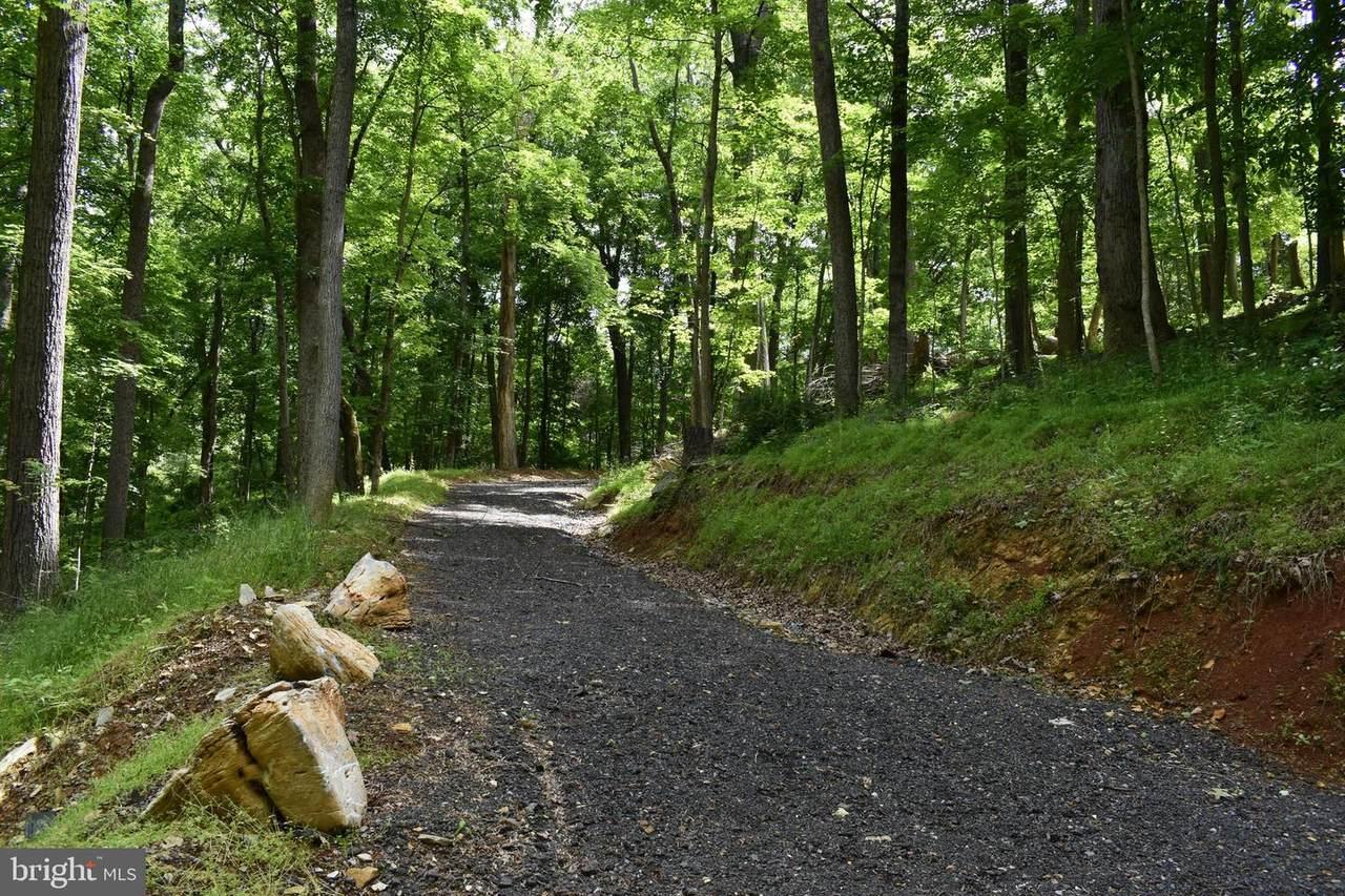 47 Acres Trough Road - Photo 1