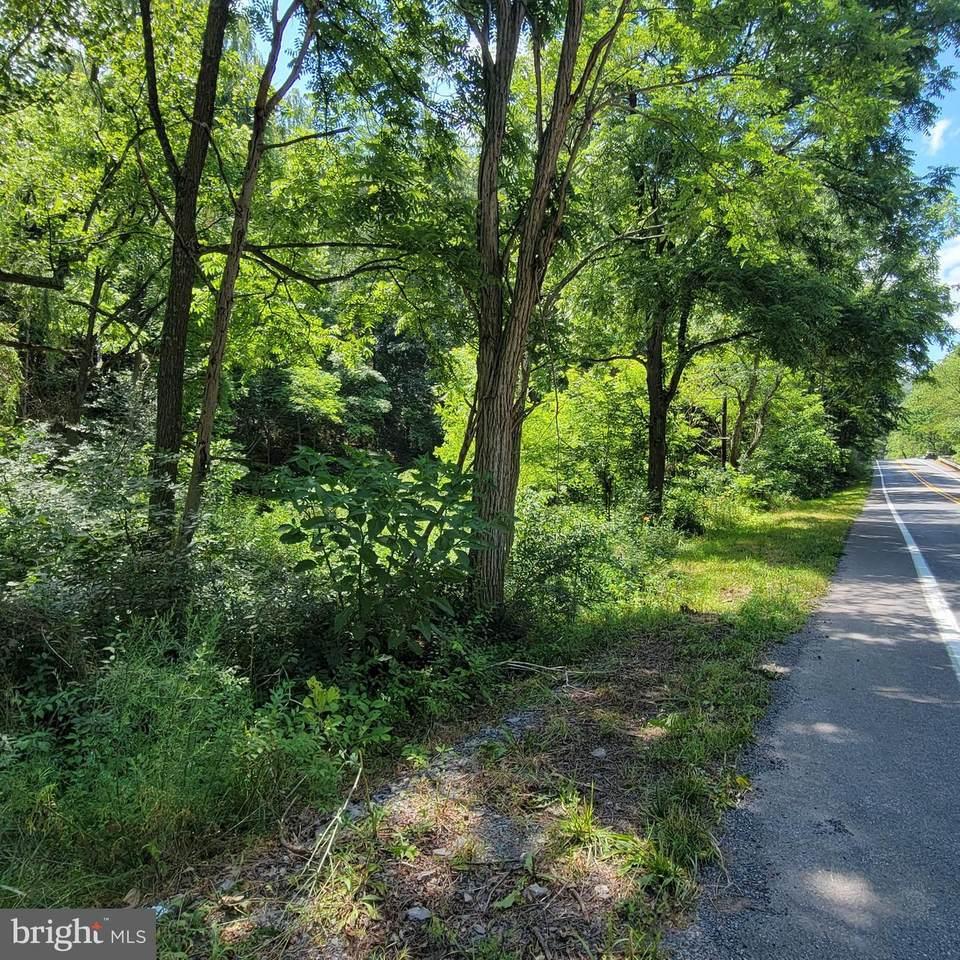 Paw Paw Road - Photo 1