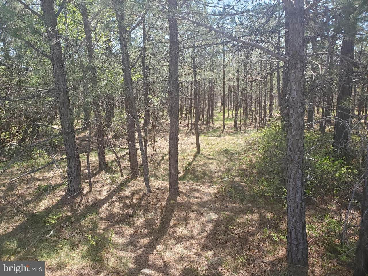Lot 355 Ns Country Club Road - Photo 1