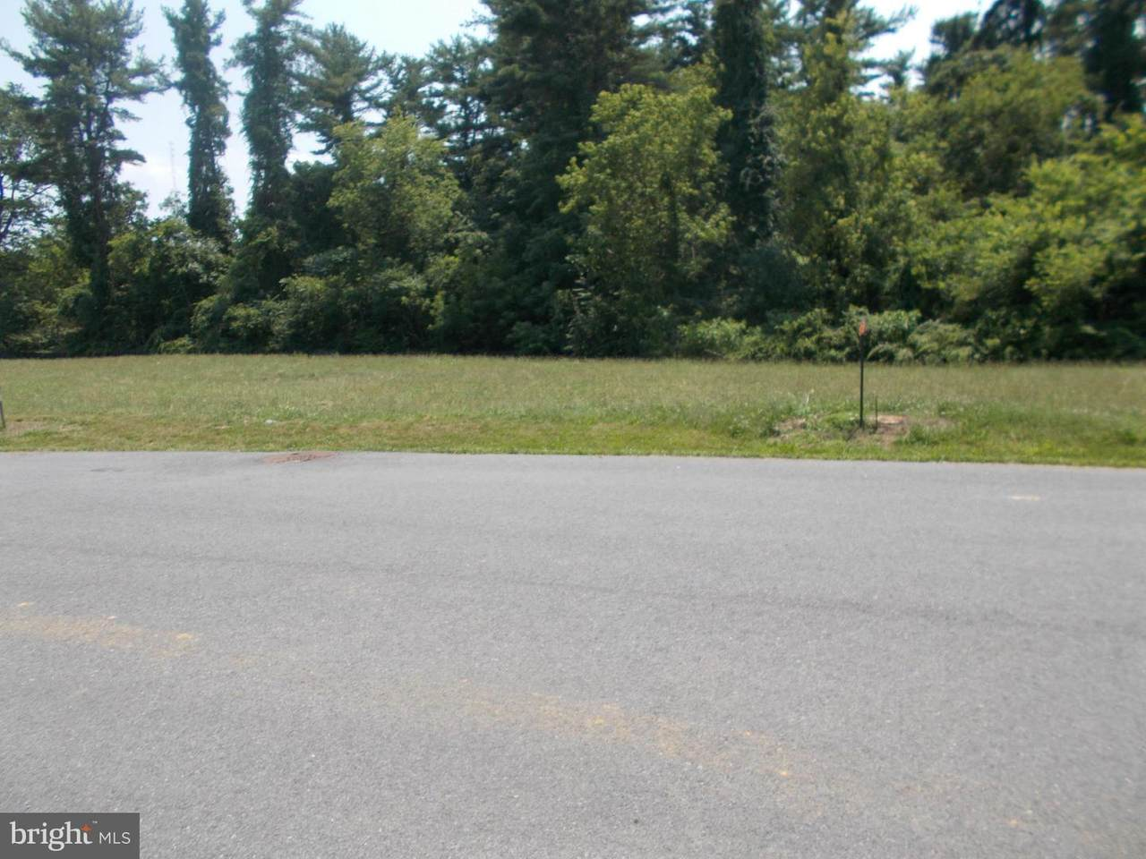 10835 Hershey Drive - Photo 1