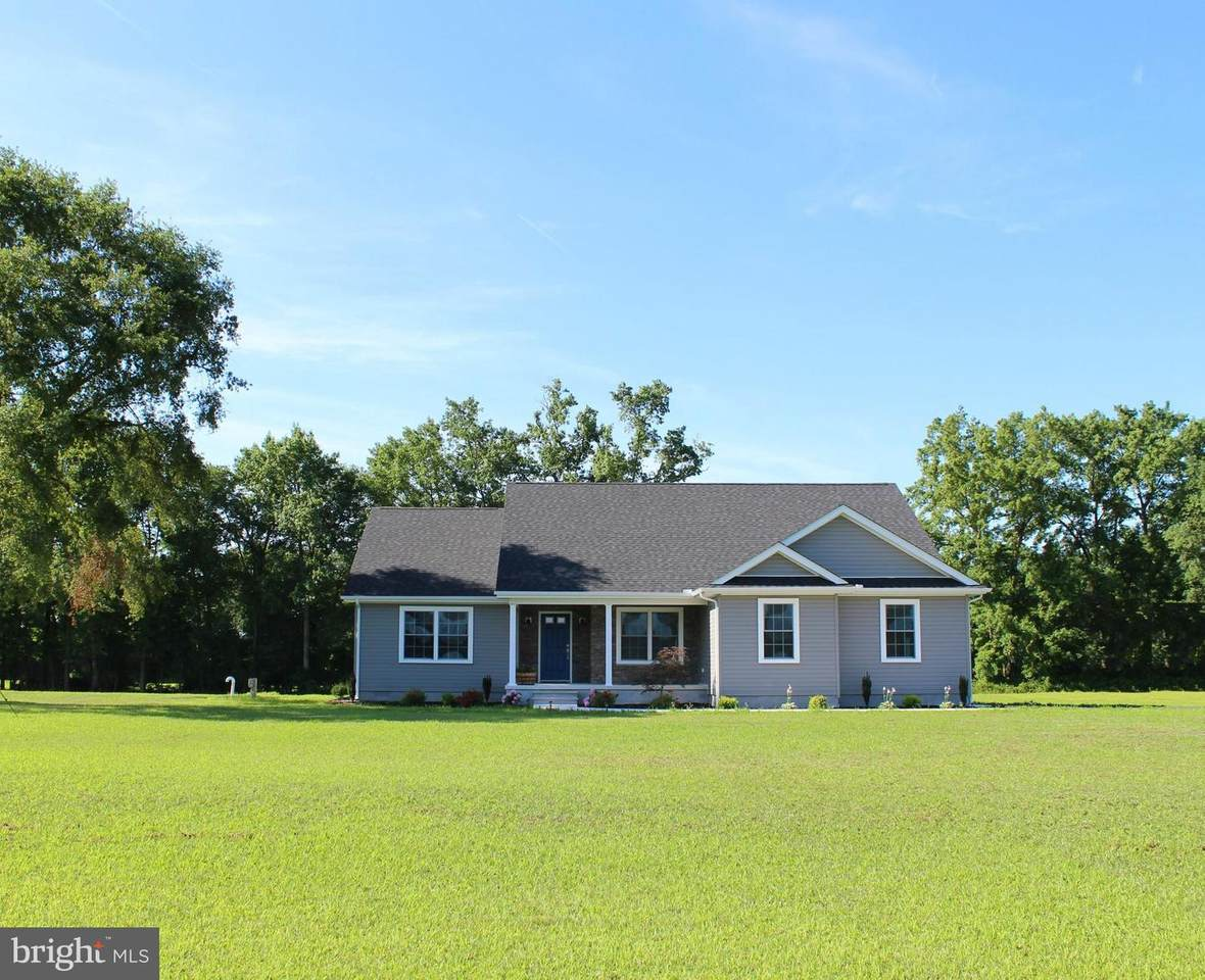 34282 Cowhouse Branch Road - Photo 1
