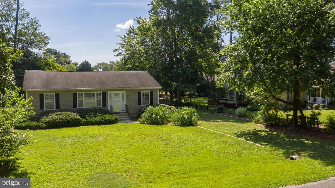 31217 Mohican Drive - Photo 1