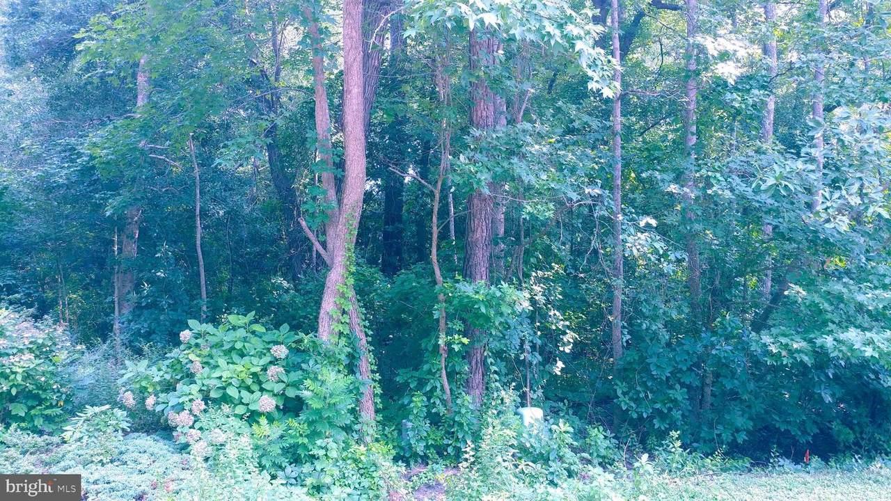 8 Laurel Trail - Photo 1