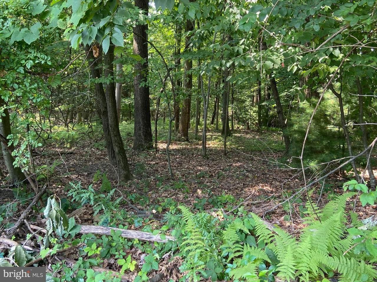 121 Deer Trail Drive - Photo 1