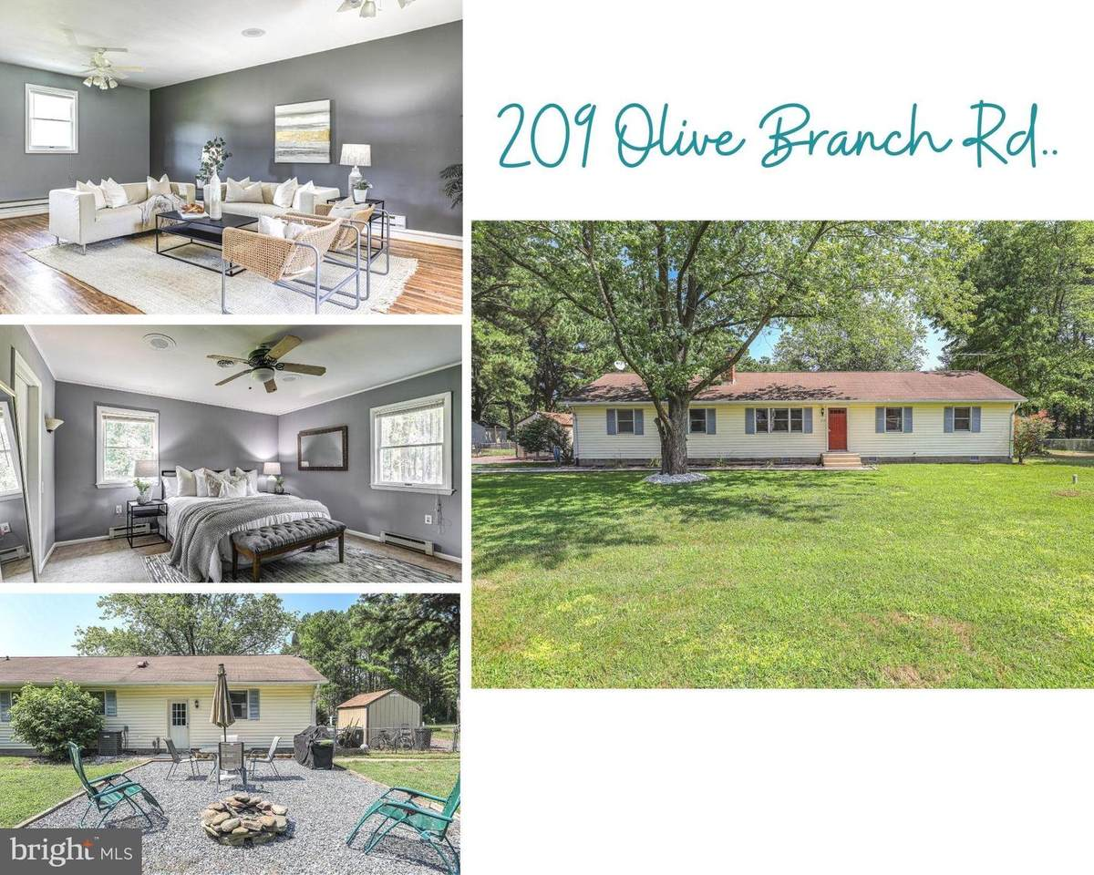 209 Olive Branch Road - Photo 1