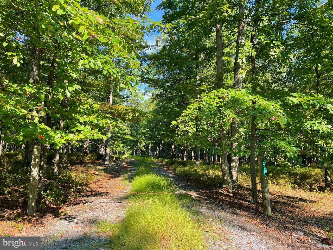 Doman Ridge Road - Photo 1