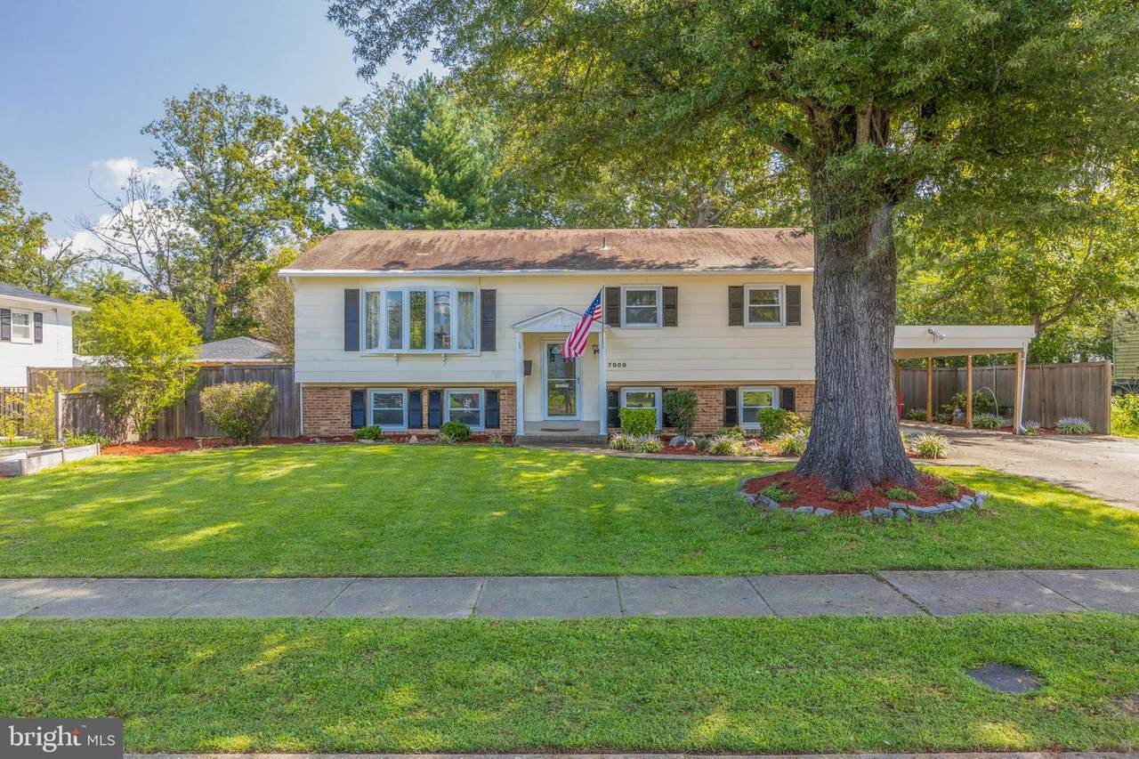 7909 Donelson Street - Photo 1