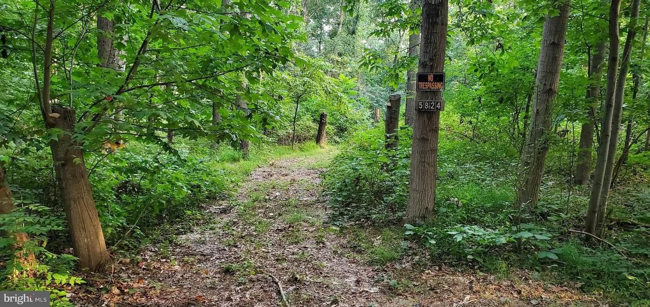 5824 Woods Road - Photo 1