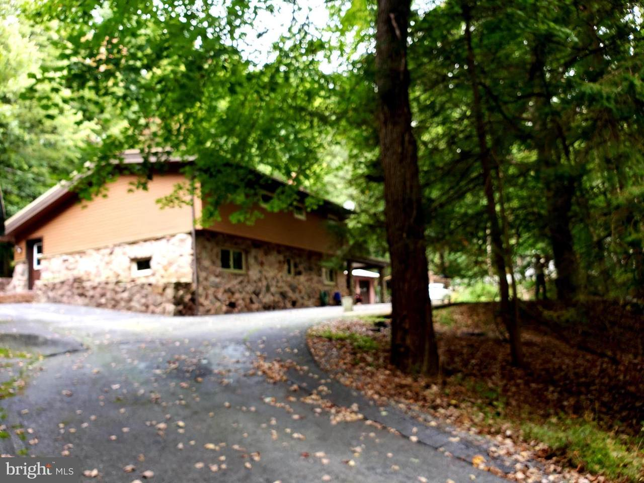983 Mine Road - Photo 1