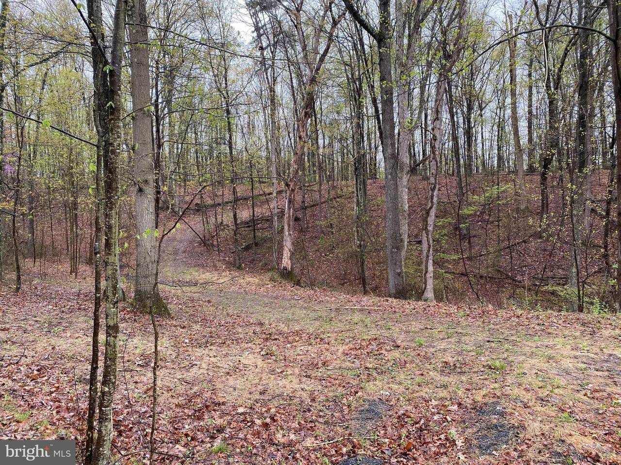 Little Creek Trail - Photo 1