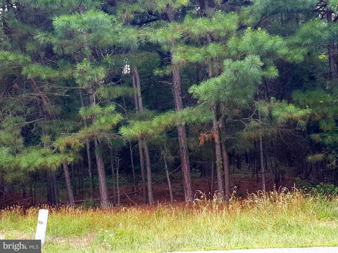 LOT #6 Nanticoke Road - Photo 1