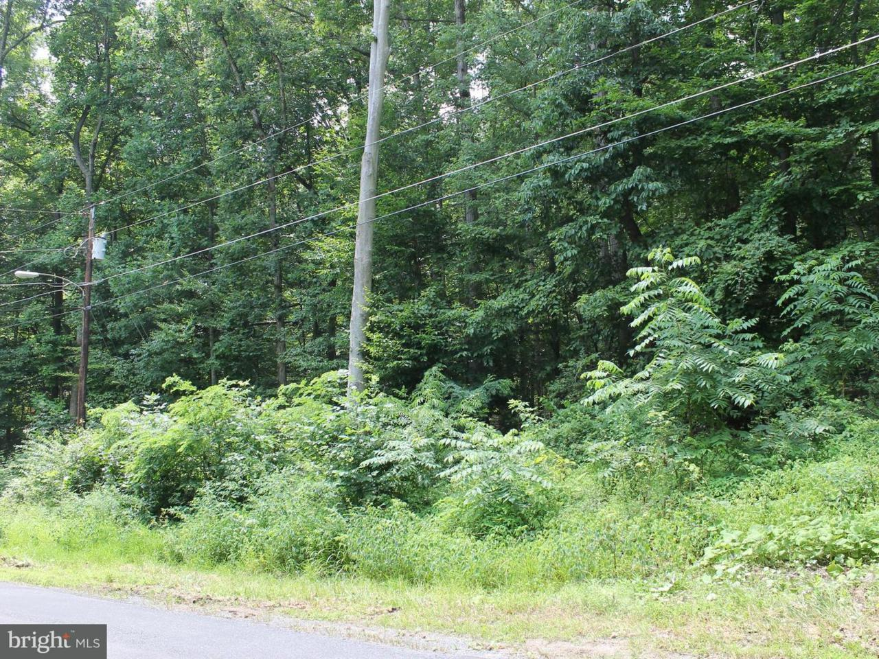 23 Ridge Trail - Photo 1
