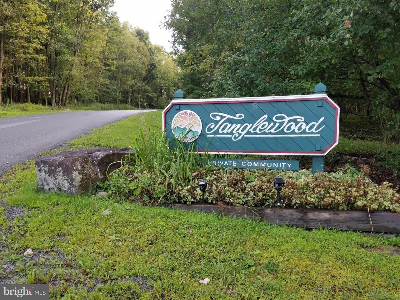 587 Tanglewood Drive - Photo 1
