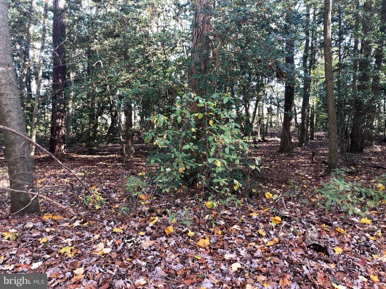 Lot 7 Wild Oak Drive - Photo 1