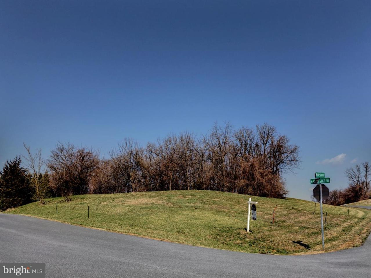 1473 Homespun Drive - Photo 1
