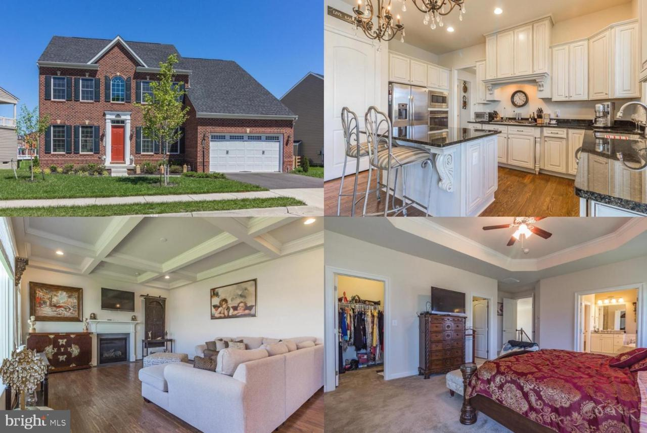 41514 Carriage Horse Drive - Photo 1