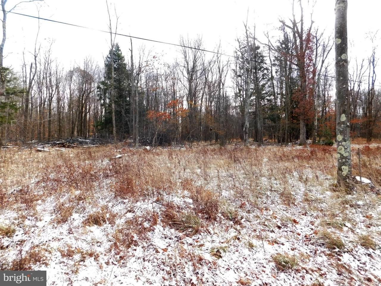Cherry Ridge Road (Lot 7) - Photo 1