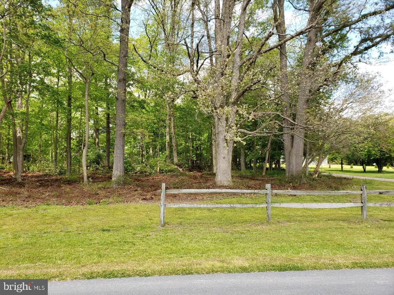 0 Piney Neck Road Lot#1 Oakwood - Photo 1