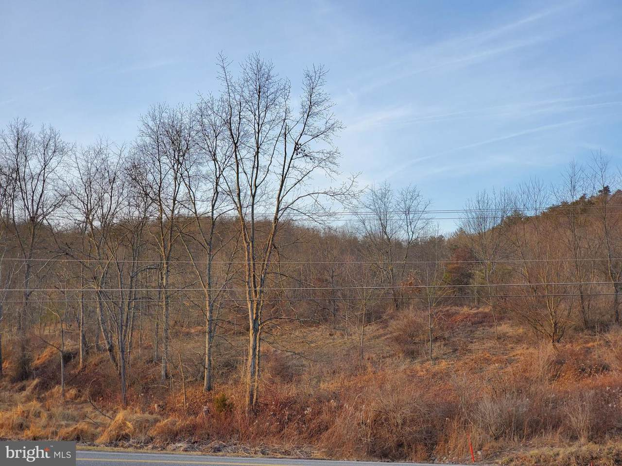 Little Buffalo Road - Photo 1