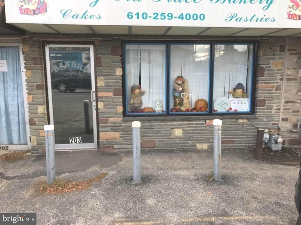 203 Shadeland Avenue - Photo 1