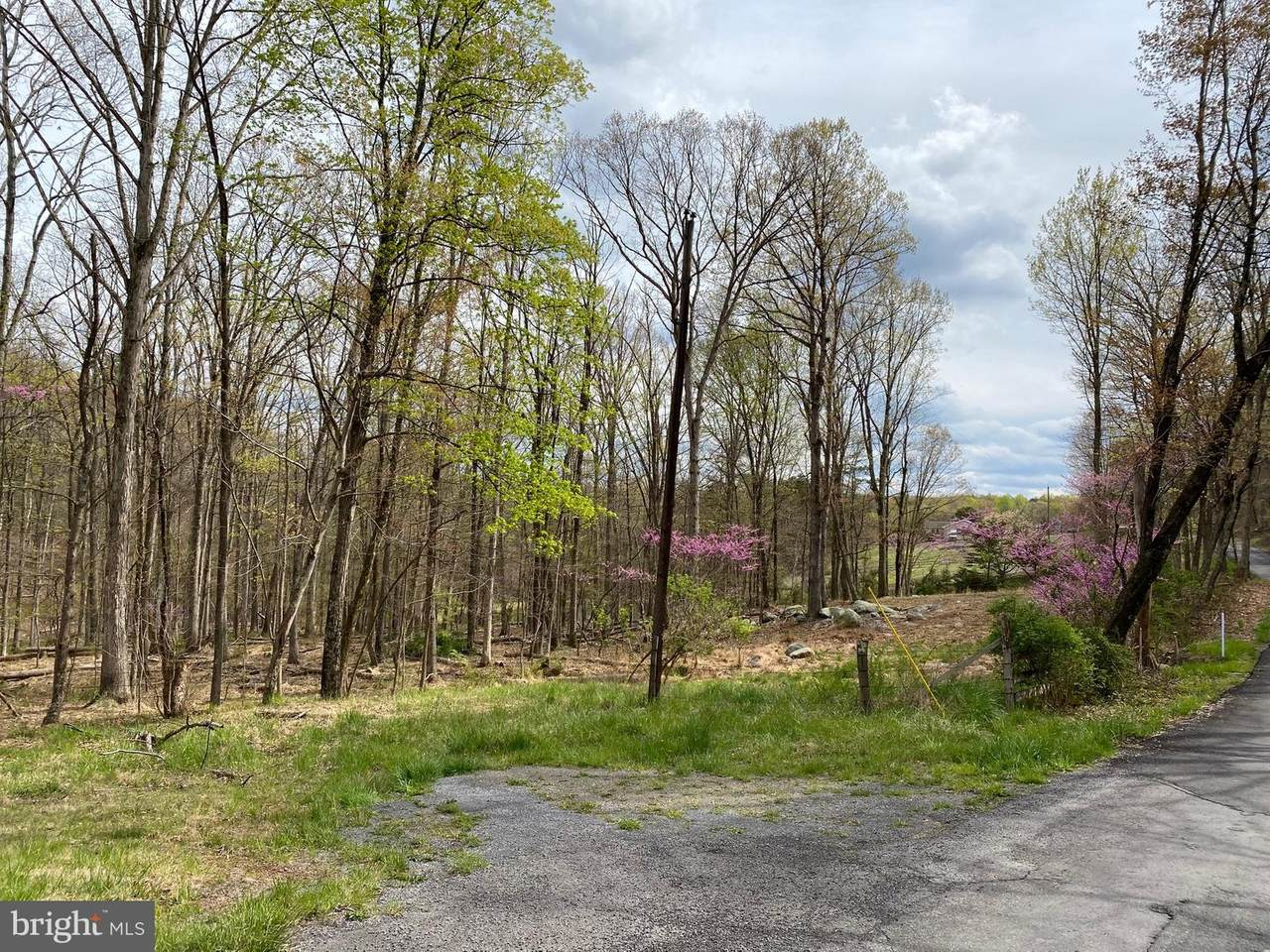 Woodmont Road - Photo 1