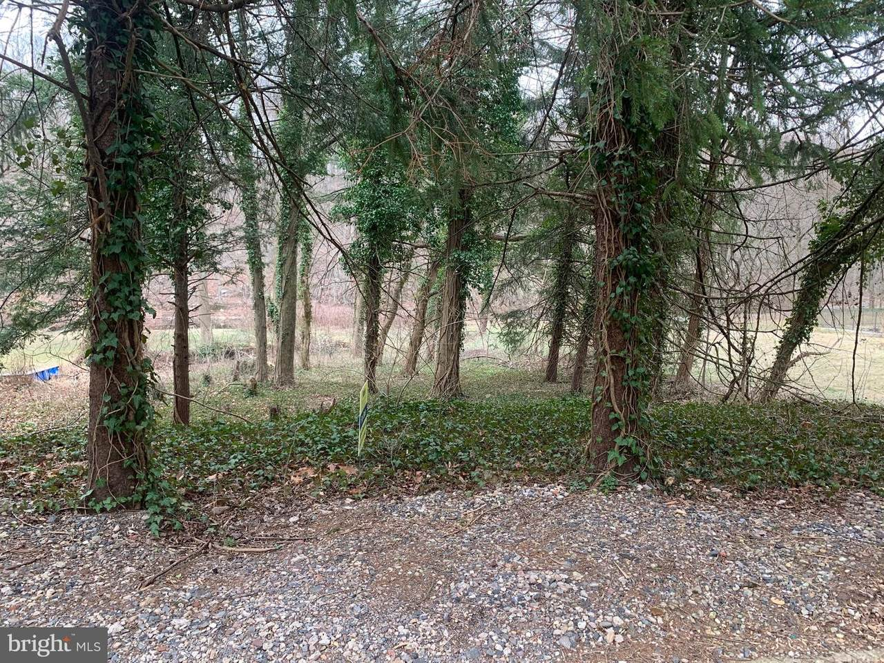 0 Creek Road - Photo 1