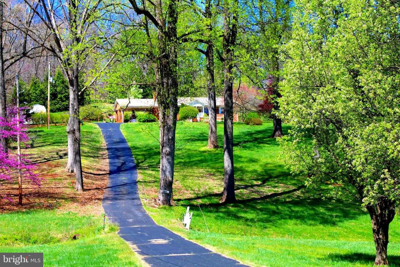 18142 Buzzard Hollow Road - Photo 1
