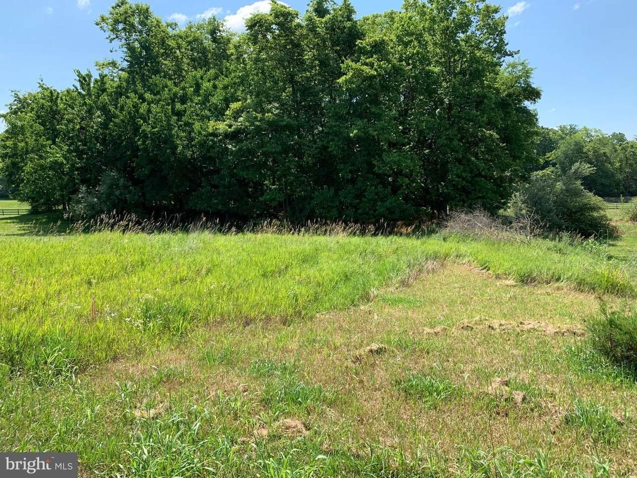 Lot 8 Chicory Court - Photo 1