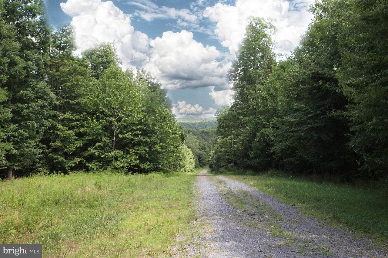0 Paradise Road - Photo 1