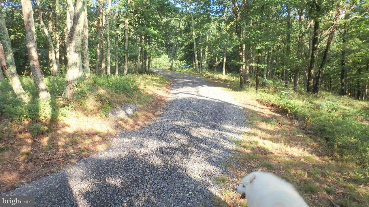 342 Nathaniel Mountain Drive - Photo 1