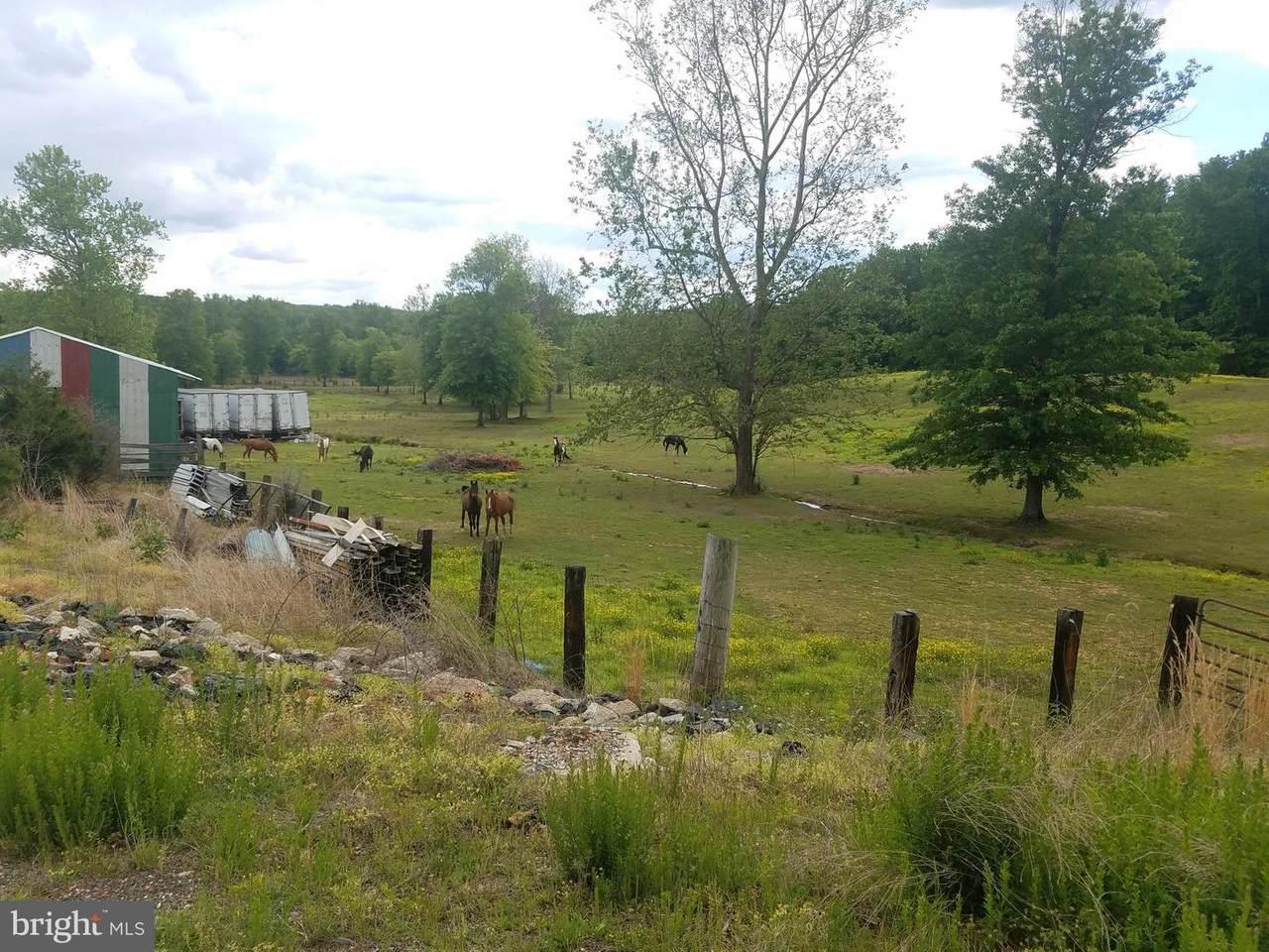 16420 Cedar Lawn Drive - Photo 1