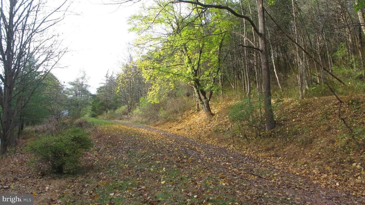 144 Geigel Hill Road - Photo 1