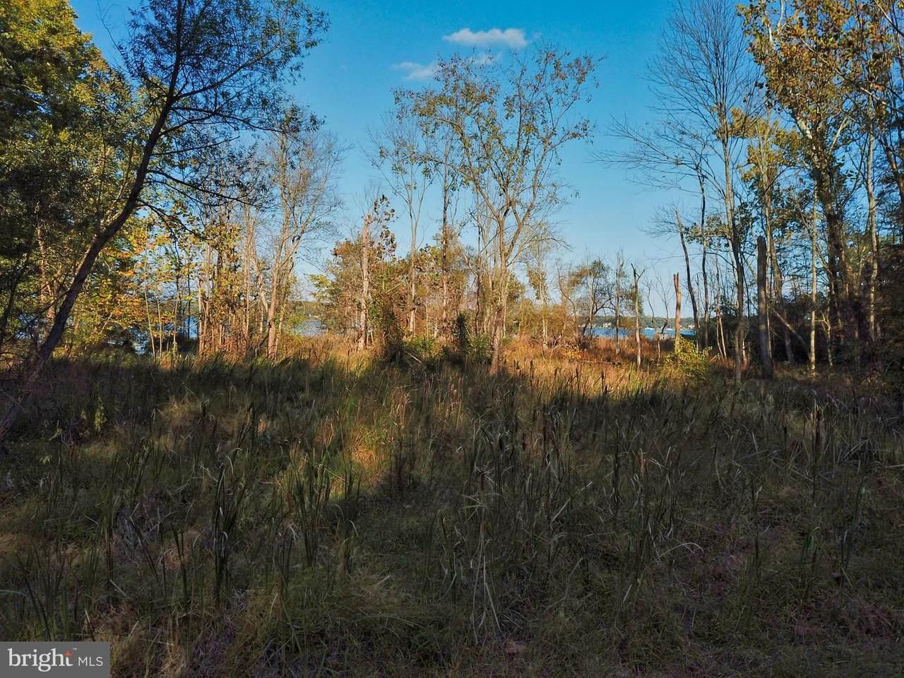 Aquia Creek Rd, 58.70189 Ac - Photo 1