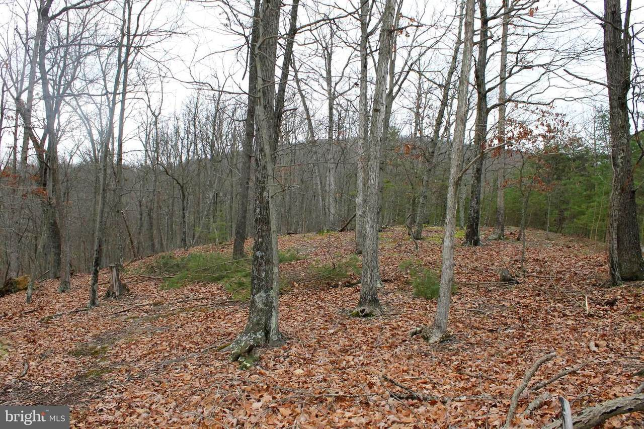 Lot #10 Staubwoods Drive - Photo 1
