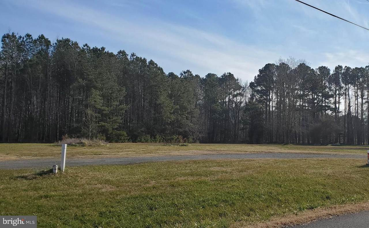 31459 Polly Branch Road - Photo 1