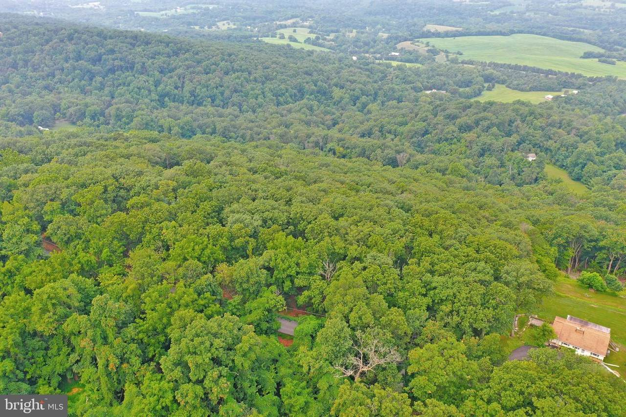 12.61 Acres Red Hill Road - Photo 1