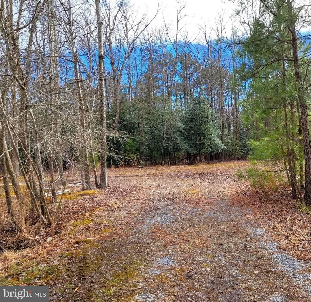 0 Whitetail Drive - Photo 1